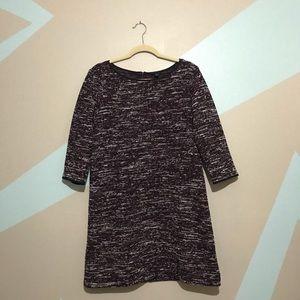ANN TAYLOR 3/4 Sleeve Purple White Shift Dress L